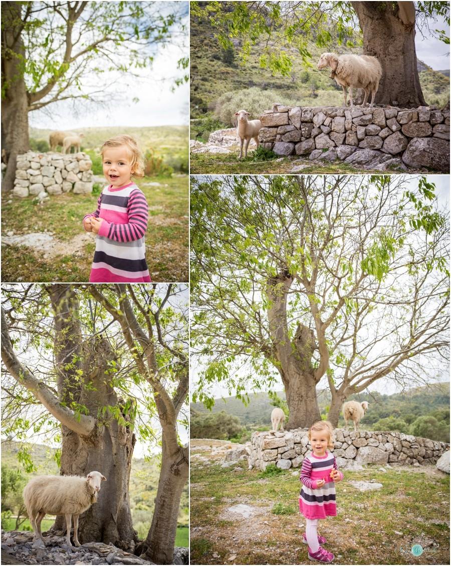 Hochzeitsfotograf-Mallorca-Privat-Familienfotos-NadjaOsieka_0005