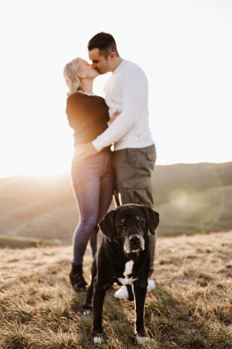 Verlobungsshooting mit Hund